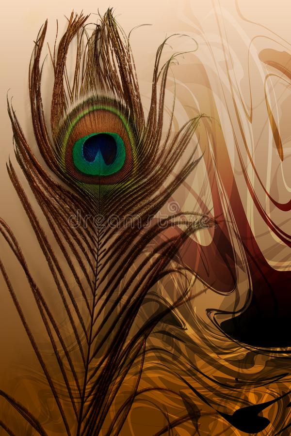 Peacock father with abstract brown shaded Background. Vector Illustration stock illustration