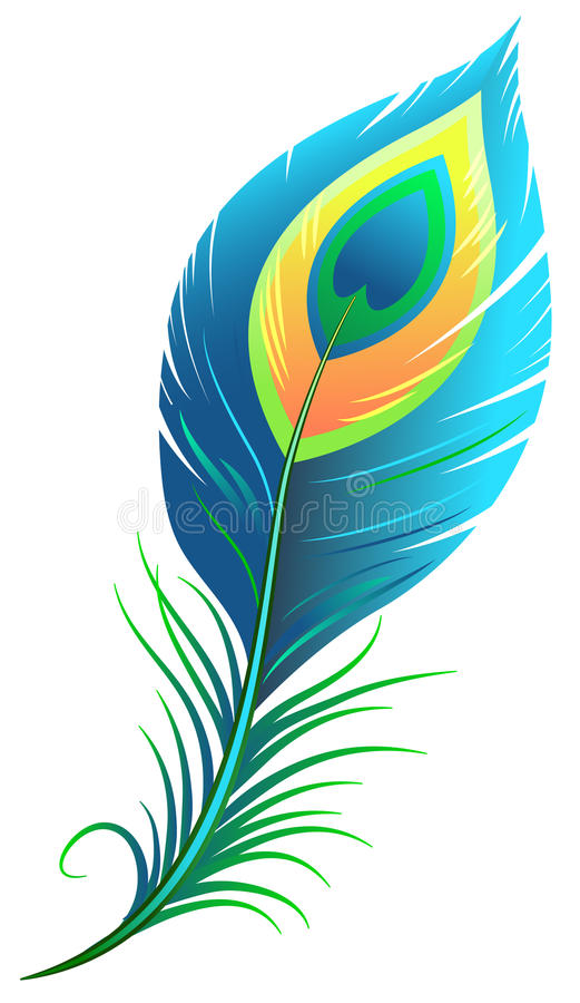 Peacock feather stock illustration