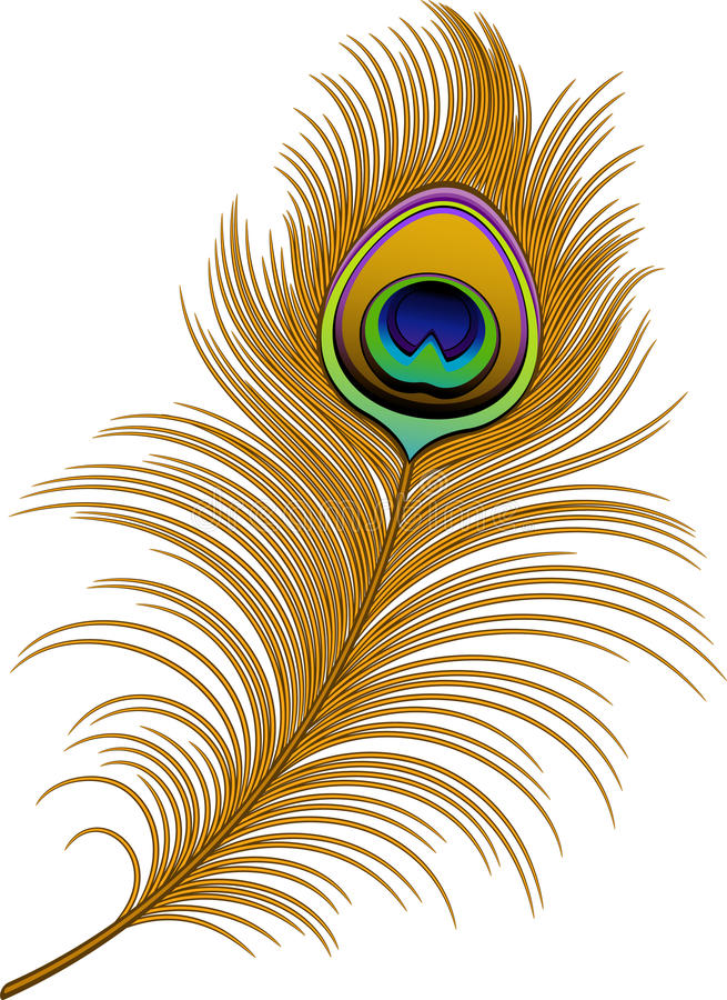 Peacock Feather. Over white. EPS 10