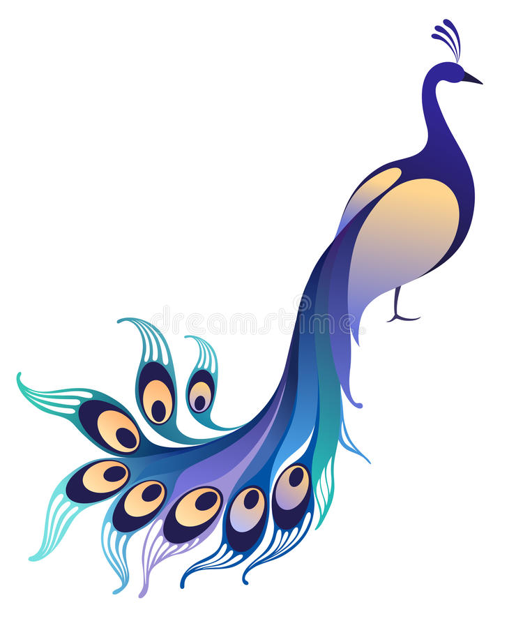 Peacock. Isolated bird on white background. Vector illustration (EPS 10