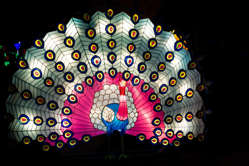 Peacock lantern with open colourful tail. London, United Kingdom - February 07, 2016: Magical Lantern Festival at Chiswick House And Gardens. Installation of stock image