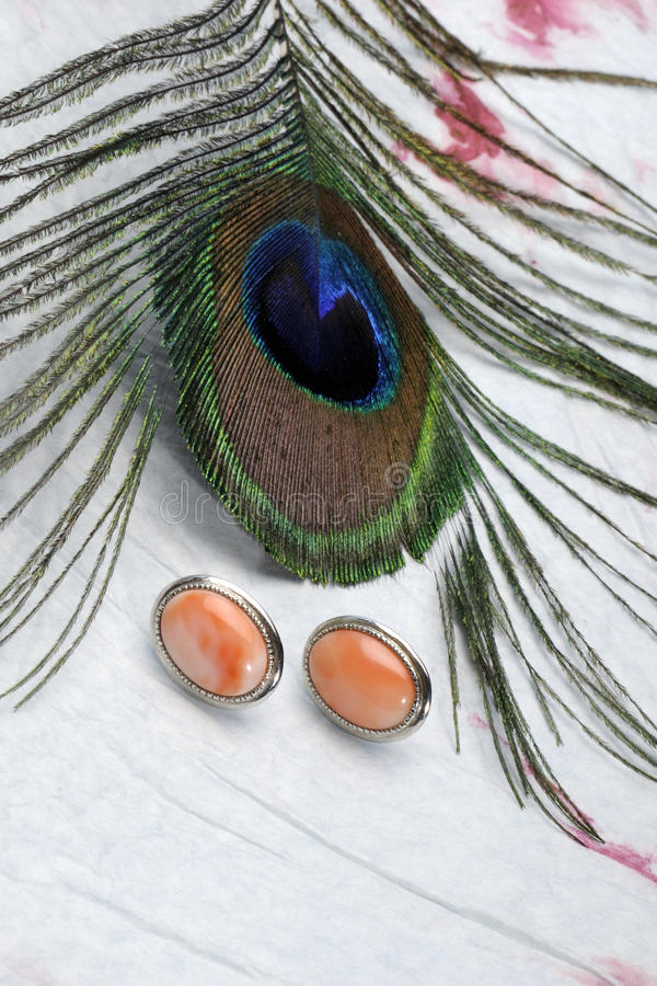 Download Peacock plume and earrings stock image. Image of object - 10896715