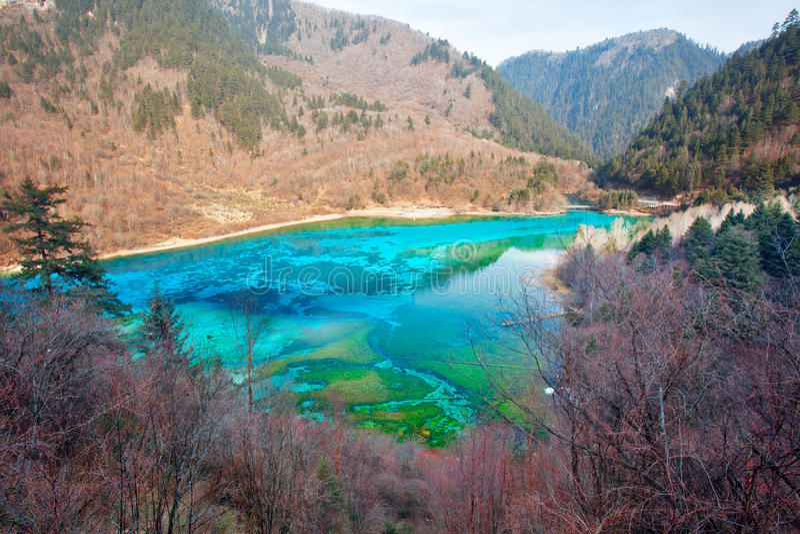 Peacock River In Jiuzhai Valley Stock Photos