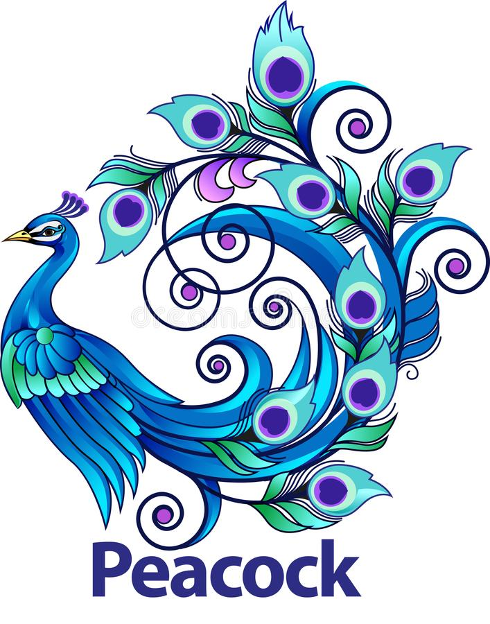 Peacock symbol. Vector illustration, modification peacock as symbol royalty free illustration