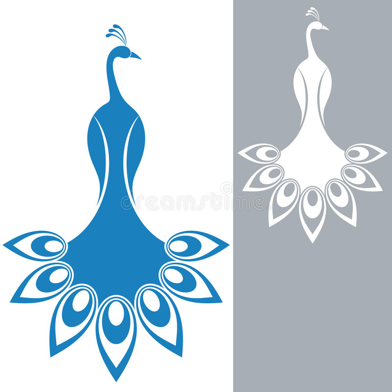 peacock stock vector illustration of white tail peacock 41155468 rh dreamstime com peacock vector logo peacock vector png