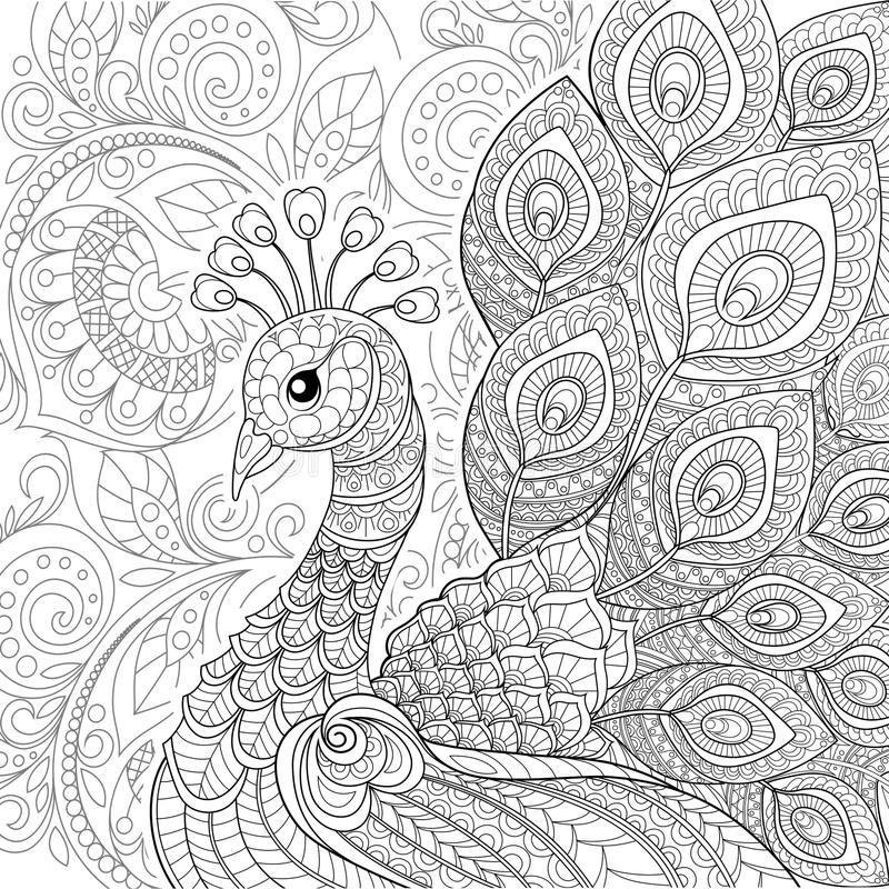 Peacock in zentangle style. Adult antistress coloring page. Black and white hand drawn doodle for coloring book stock illustration