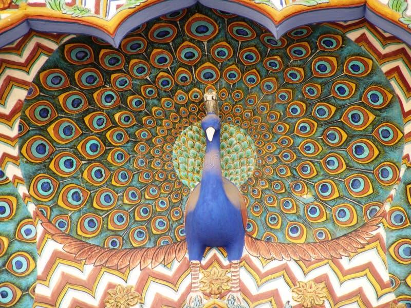Peacok, Stadtpalast, Jaipur lizenzfreies stockbild