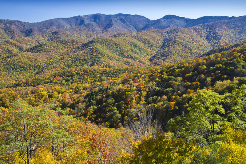 Peak Autumn colors, Blue Ridge Parkway royalty free stock image