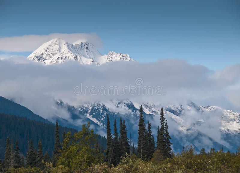 Peak. Cloudy view of a snowy glacial peak with thick forest in the foreground stock photo