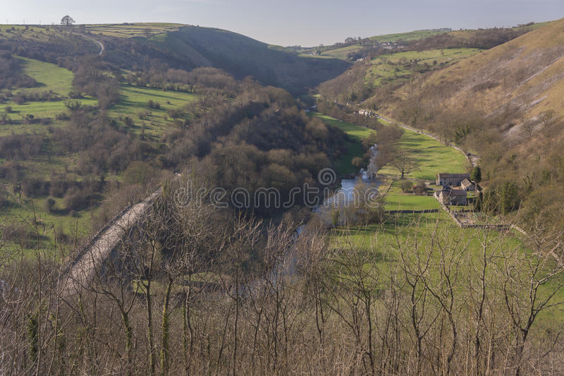 Download Peak district stock photo. Image of country, forest, cows - 24795548