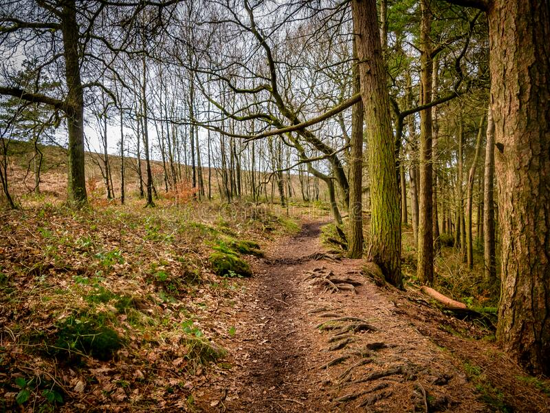 The Peak District, Staffordshire royalty free stock photo