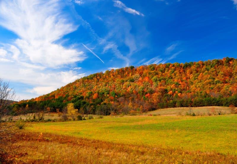 Peak Fall Foliage stock photography