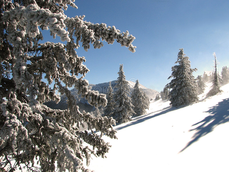 Peak of Sierra Blanca in the Southern Rockies royalty free stock images