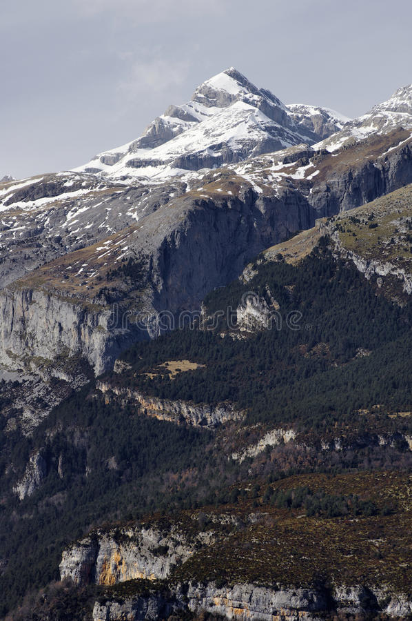 Download Peaks stock image. Image of ecosystem, forest, european - 23373725