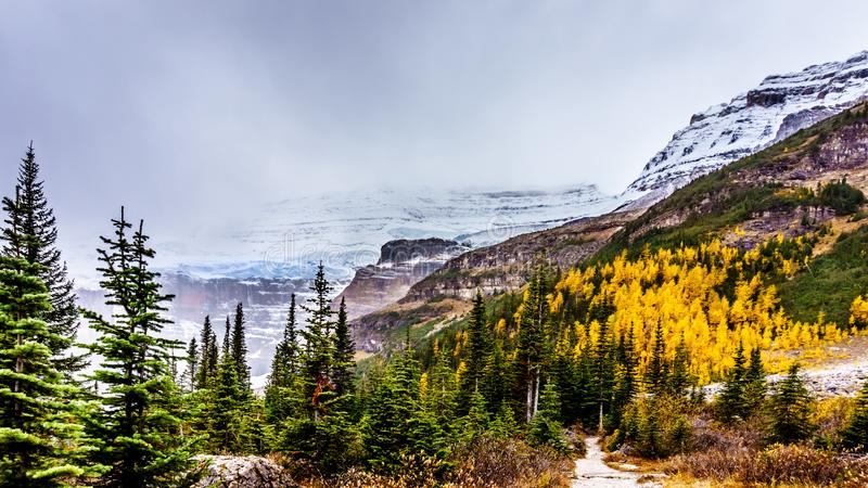 Peaks in the Rocky Mountains at the Plain of Six Glaciers at Lake Louise, Banff National Park. View of peaks in the Rocky Mountains at the Plain of Six Glaciers stock photo