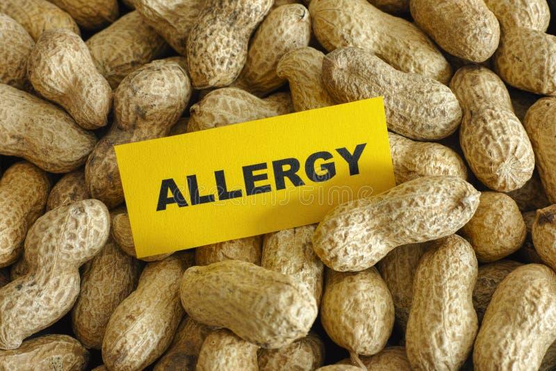 Peanut allergy stock photography