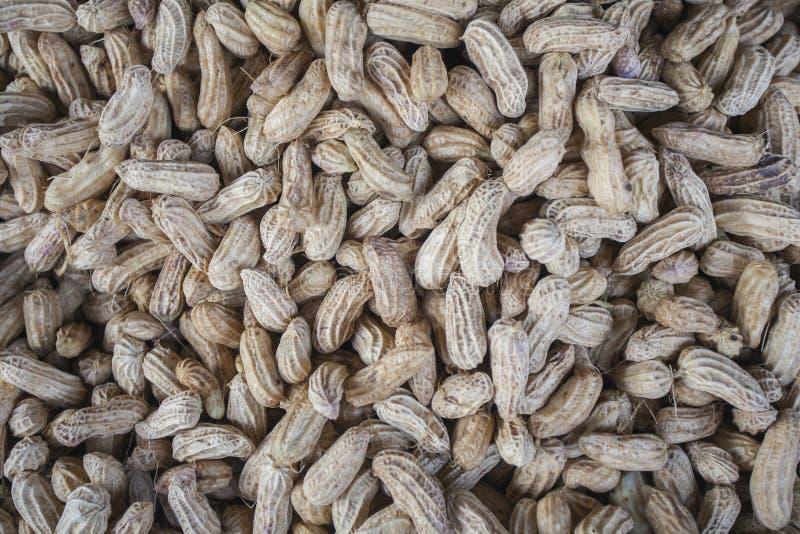 Peanut background thailand stock photography
