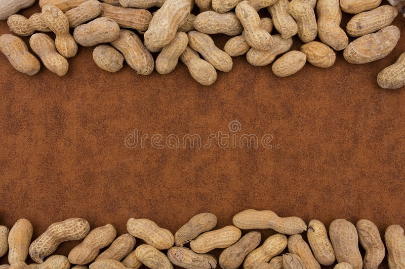 Peanut Border royalty free stock images