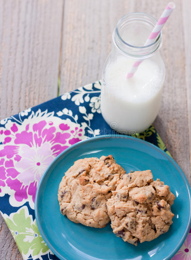 Free Peanut Butter Cookies With Milk Royalty Free Stock Image - 21391716