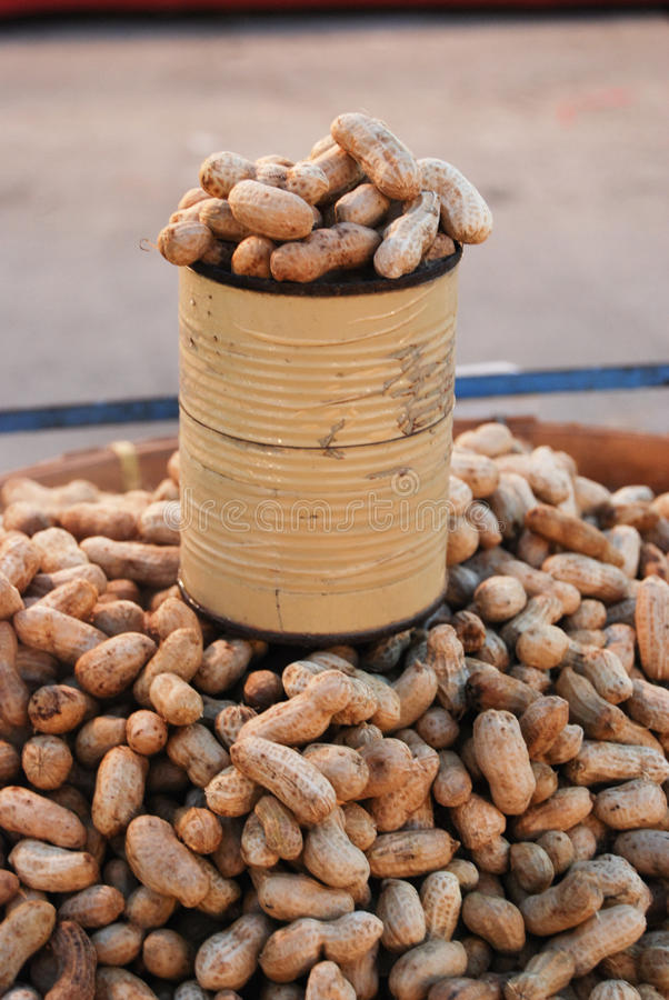 Peanut in can for sale royalty free stock photo