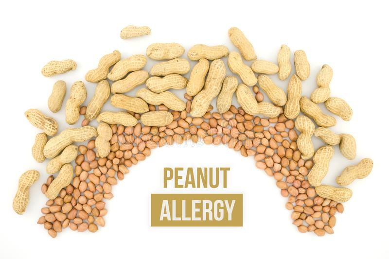 Peanut or groundnut. Food allergy health concept, close up on wooden background stock images