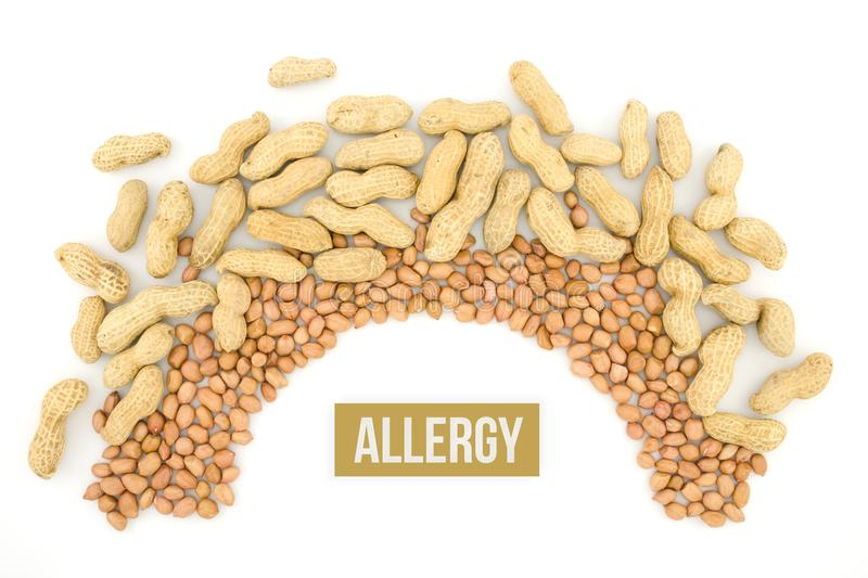 Peanut or groundnut. Food allergy health concept, close up on wooden background stock photography