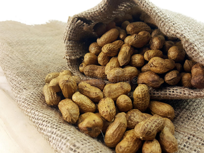 Peanut or groundnut pour out of hemp sack royalty free stock photo