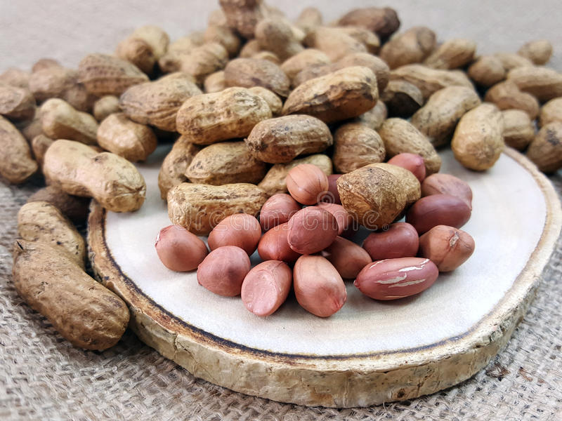 Peanut or groundnut on a wood plate. royalty free stock photos