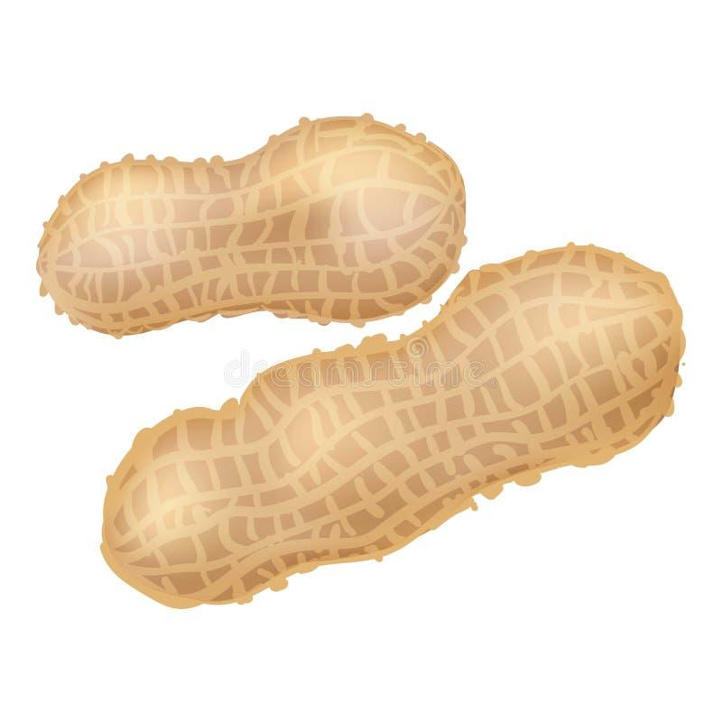 Peanut icon, cartoon style. Peanut icon. Cartoon of peanut vector icon for web design isolated on white background stock illustration