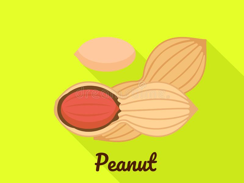 Peanut icon, flat style. Peanut icon. Flat illustration of peanut vector icon for web design vector illustration