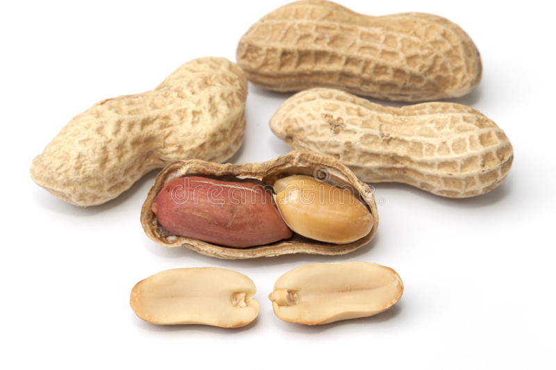 Peanut isolated stock images