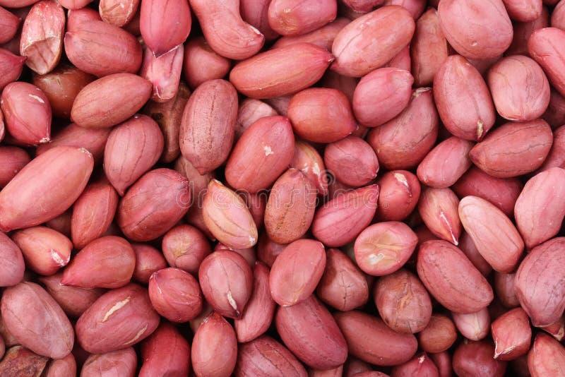 Peanut Kernels Background. Closeup shot of peanut kernels for background uses royalty free stock photo