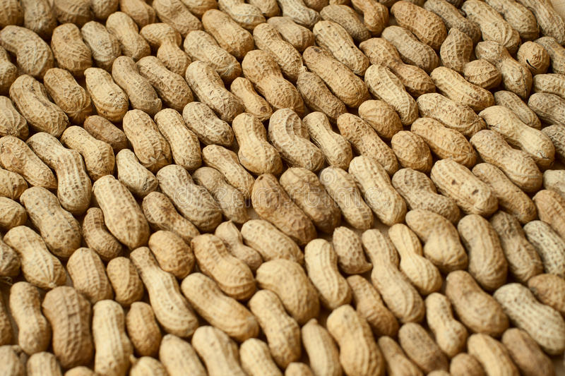 Peanut series expansion. Peanuts in the shell series expansion stock photo