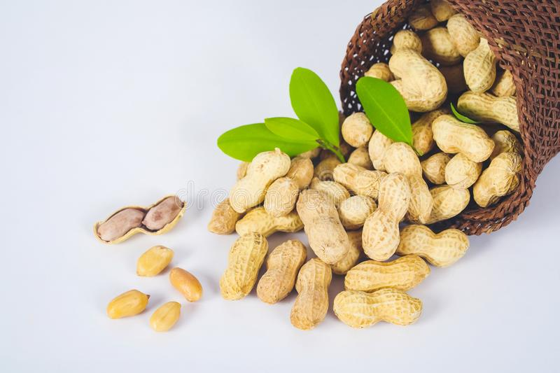 Peanut spill out of basket royalty free stock images