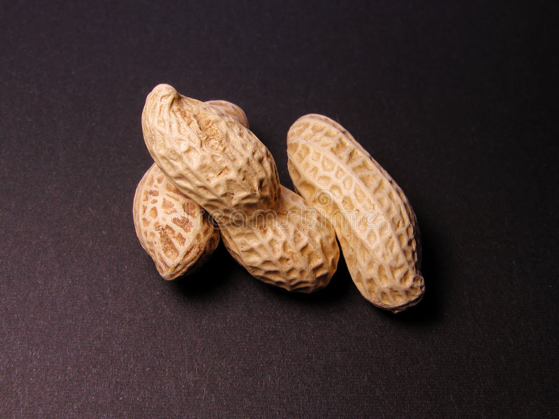Download Peanuts stock photo. Image of black, objects, seeds, fruits - 114304