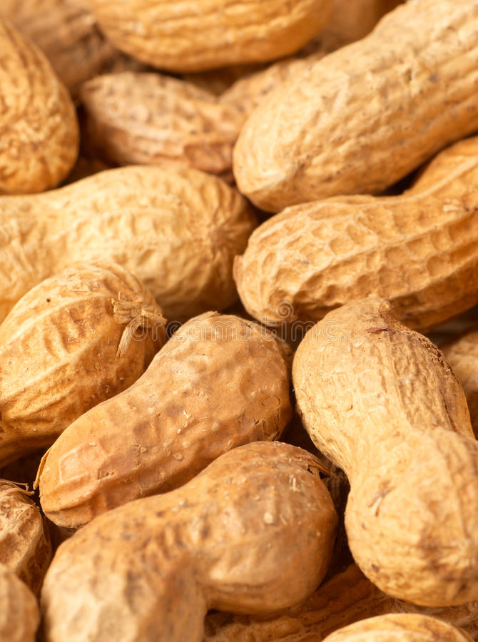 Download Peanuts stock photo. Image of crispy, vein, party, pattern - 14828180