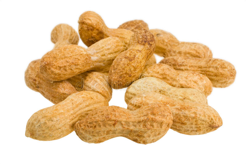 Download Peanuts stock photo. Image of food, small, nuts, crops - 18003752