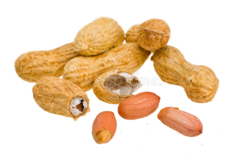 Download Peanuts stock image. Image of shot, fruit, snack, large - 18003839