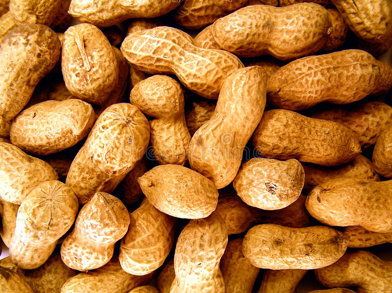 Download Peanuts stock photo. Image of health, spicy, snack, snacking - 516750