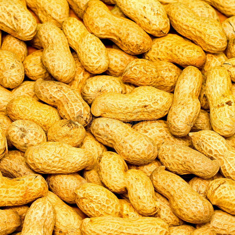 Download Peanuts background stock photo. Image of background, peanut - 17357898
