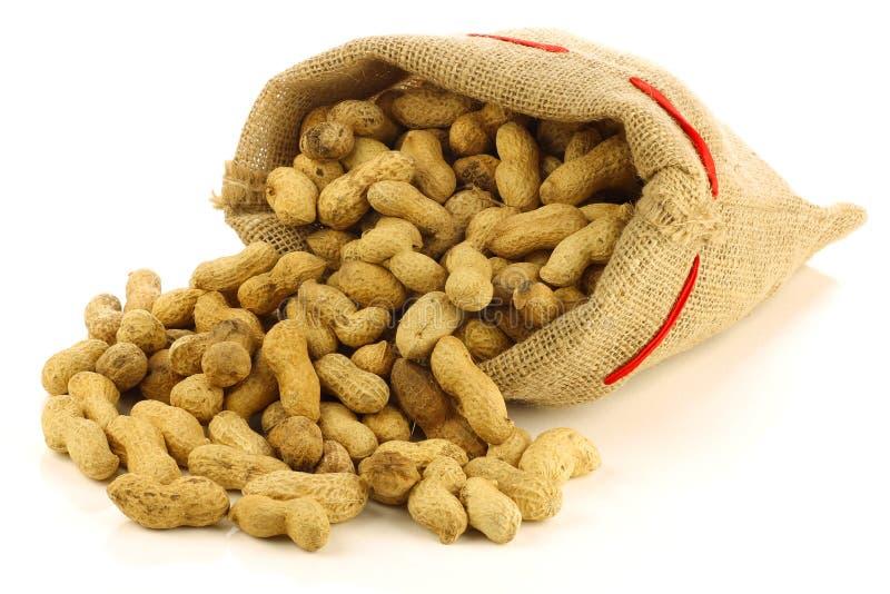 Download Peanuts in a burlap bag stock image. Image of arachis - 22470951