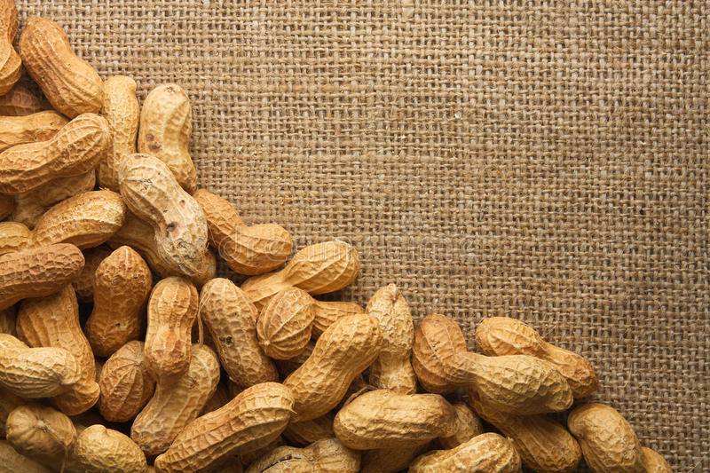 Download Peanuts frame stock image. Image of nutrition, heap, foodstuff - 17733243