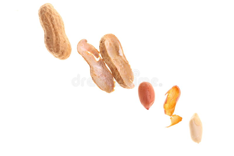 Download Peanuts isolated on white stock image. Image of health - 24414971