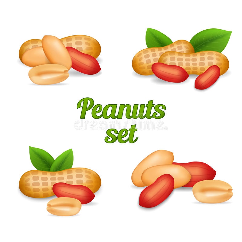 Peanuts isolated on white stock image