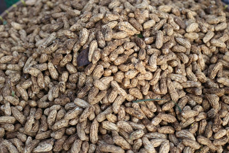 Peanuts for sale on market. Peanuts for sale on market, close up in java  indonesia royalty free stock image