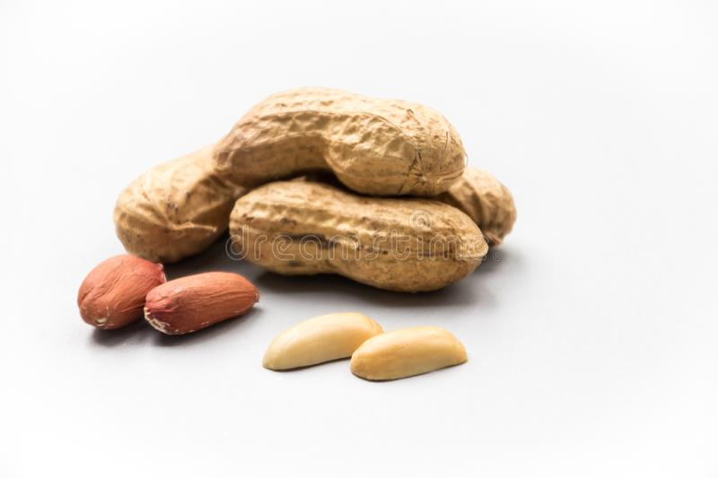 Isolated peanuts on white background royalty free stock photography