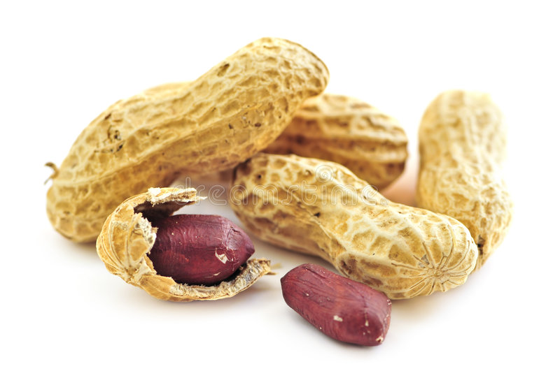 Peanuts and shells stock photography