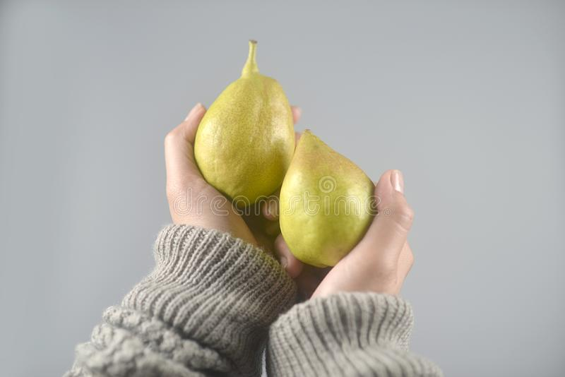 Pear fruit on women hands with sweater on light grey background. horizontal image. Beautiful, brown, closeup, color, concept, design, dessert, diet, dot stock photography