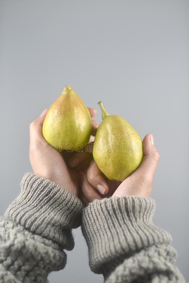 Pear fruit on women hands with sweater on light grey background. vertical image. Beautiful, brown, closeup, color, concept, design, dessert, diet, dot, exotic stock photography