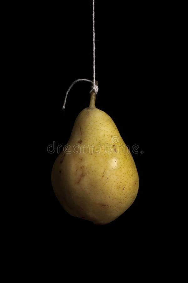 Pear hanging on black background royalty free stock images